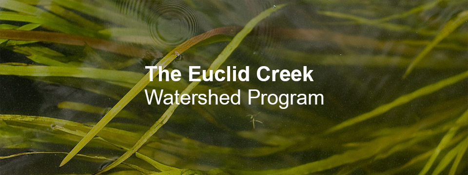 Euclid Creek Watershed Program - Local Organizations Directory - City of Lyndhurst, Ohio